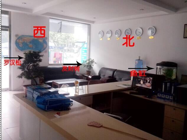 上海办公室设计之办公室鱼缸摆放风水