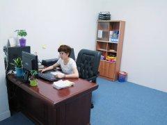 上海办公室设计公司_财务室里适合摆放什么植物