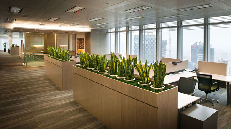 潔凈而古典的辦公空間設計效果