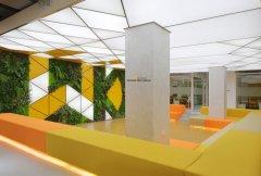 上海办公室设计漂亮的绿化植物墙